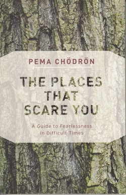 The Places That Scare You: A Guide to Fearlessness in Difficult Times by Pema Chödrön <br>read by Joanna Rotté on four audio cds