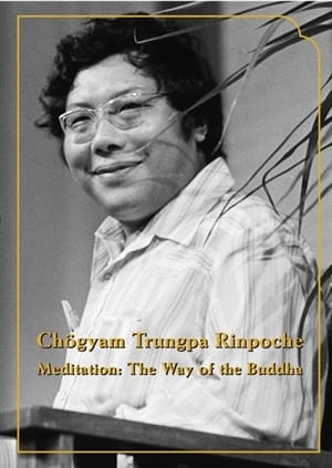 Meditation: The Way of the Buddha <br>Five talks by Chogyam Trungpa on DVD