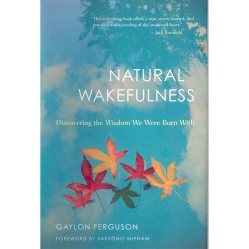 Natural Wakefulness, by Gaylon Ferguson