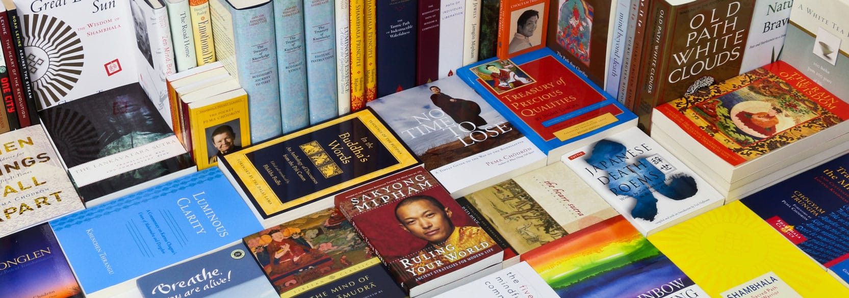 Buddhist Books and Media on Buddhist Meditation, Meditation Courses on How to Meditate, New Releases. Over 1500 titles, CD's and DVD's in stock. All titles discounted. Prompt shipping. We aren't Amazon, but we know our titles. Call or write with questions.